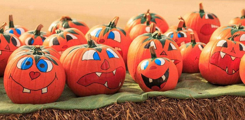Pumpkin Painting Party for 4th-12th Grades: Wednesday, October 23rd 6:30-7:30 pm